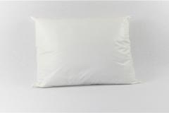 Reusable-Pillow